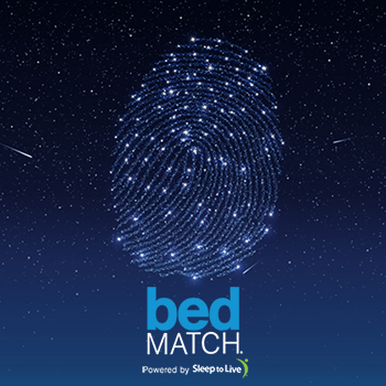 bedmatch-thumb-and-logo.jpg